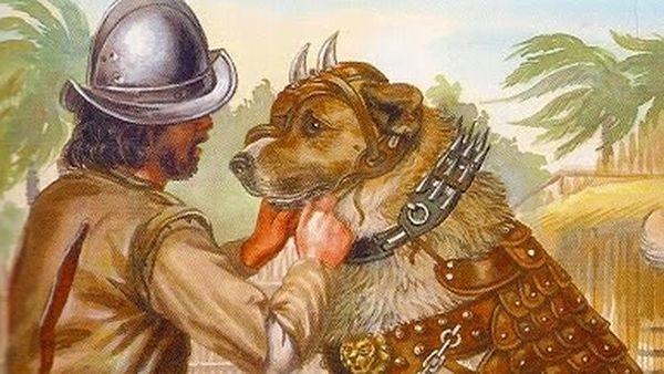 maltrato animal colonialismo